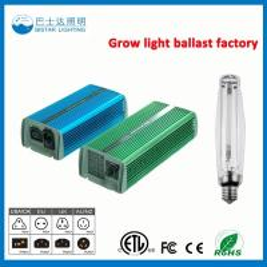 China Factory price HPS lamp hydroponics ballast grow indoor lamp ballast 400w 600w 1000w on sale
