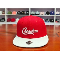 Wholesale ACE OEM ODM Men Women Outdoor Creative Custom 3D Embroidery Logo Hip Hop Baseball Snapback Cap from china suppliers