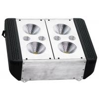 Wholesale Agricultural Growing 600 Watt Led Grow Light Panel Kits Indoor Plants High Intensity from china suppliers