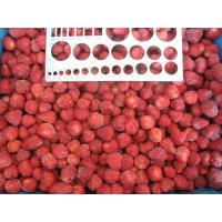 Wholesale IQF Frozen Strawberry Dice from china suppliers