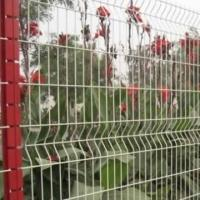 Sell Wire Mesh Netting
