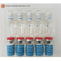 Wholesale Chymar Injection 5000IU Prescription Drugs Ampoules Alpha - Chymotrypsin From Bovine P from china suppliers