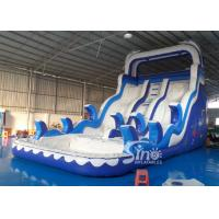 Quality Double Lanes Inflatable dolphin Water Slides with pool EN14960 For Adults and kids for sale