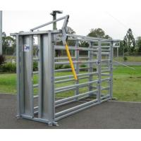 Wholesale Durable Cattle Handling Equipment Heavy Duty Farm Fence Panels from china suppliers