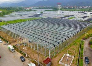 Wholesale Irrigation Clear Glass Tomatoes Shade Greenhouse from china suppliers