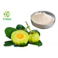 Wholesale HCA Weight Loss Supplement Powder 50% 60% Hydroxycitric Acid Garcinia Cambogia Extract from china suppliers
