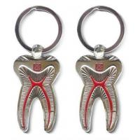 Wholesale Dental Keychain For Dentist Team Gift Molar Tooth from china suppliers