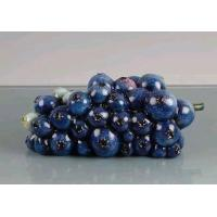 Wholesale Blueberries Lacquer from china suppliers