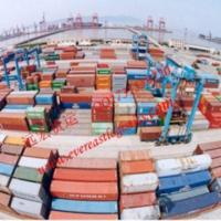 Lcl Cargo Shipping To Muara From Shenzhen, China for sale