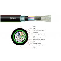 12 Core Single Mode Fiber Optic Cable , Armoured Outdoor Cable GYFTY53 OEM