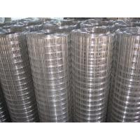 """Wholesale Hot - dip galvanized welded wire mesh, 1/2"""" x 1 / 2"""" for Fence,Cages from china suppliers"""