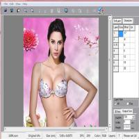China PLASTIC LENTICULAR PSDTO3D Advanced version 3d lenticular software designs for sale