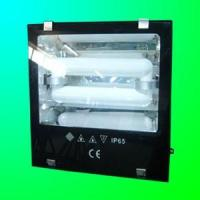 Wholesale Induction Lamp for Flood Light (RZHL303) from china suppliers