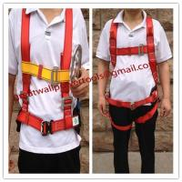 Wholesale Asia Industrial safety belt, Fall protection, factory safey belt from china suppliers