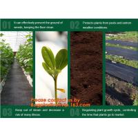 Wholesale Agricultural plastic ground cover weed mat, pp weed control mat, for greenhouse and outer use,ground cover, weed mat, ma from china suppliers