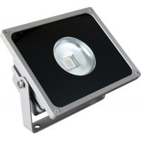 Wholesale GY1917FG IP65 Cob LED Floodlight 100w , High Quality Outdoor LED Flood Lights from china suppliers
