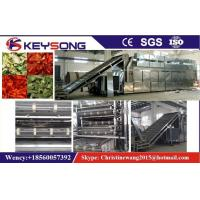 Quality Vegetable Fruit Grape Fish Drying Machine Dehydrator for sale