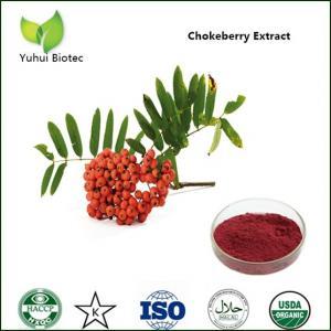 Wholesale black chokeberry extract,chokeberry extract,aronia extract,aronia chokeberryextract from china suppliers