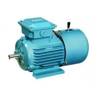 Single Phase Electric Motor, AC Electric Motor and Geared Motor,Small AC Motor