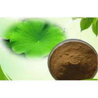 Wholesale Lotus Leaf Extract Powder To Reduce Weight 98% High Purity Lotus Leaf Extract Powder from china suppliers