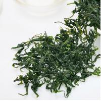 Wholesale Chinese Kuding Herbal Tea For Lowering Cholesterol, High Blood Pressure from china suppliers