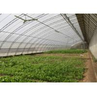Wholesale Assembled Solar Greenhouse Steel Pipe Single Tunnel For Seeding / Planting from china suppliers