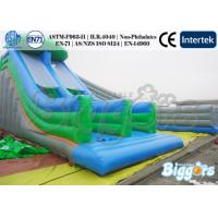 Wholesale Dry Kids Inflatable Slides Multilane Fun Slipping Game Park Rental from china suppliers