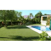 Buy cheap 20mm Monofilament Synthetic Fake Turf Grass Decoration Lawn from wholesalers