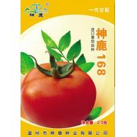 Wholesale Holy Deer168- Tomato Seed from china suppliers