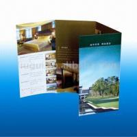 Wholesale Book&Magazine&Catalog LG-M08 Brochure from china suppliers