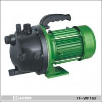 Wholesale Swimming Pool Pump TF-WP163 from china suppliers