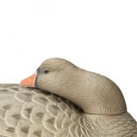 China Goose Decoys Hard Core Floating White Front Goose Sleeper 6 Pack on sale