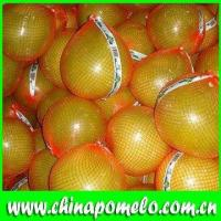 Sell Pomelo