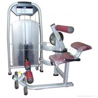 Wholesale body building,gym equipment,fitness/Lower Back Extension from china suppliers