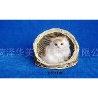 Wholesale Cat >>>DETAILS>>> C507TW from china suppliers