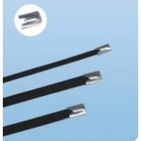 Best Plastic sprayed stainless steel cable tie wholesale