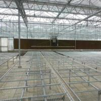 Buy cheap Horticultural Greenhouse Movable Seedbed /Greenhouse Rolling Bench from wholesalers