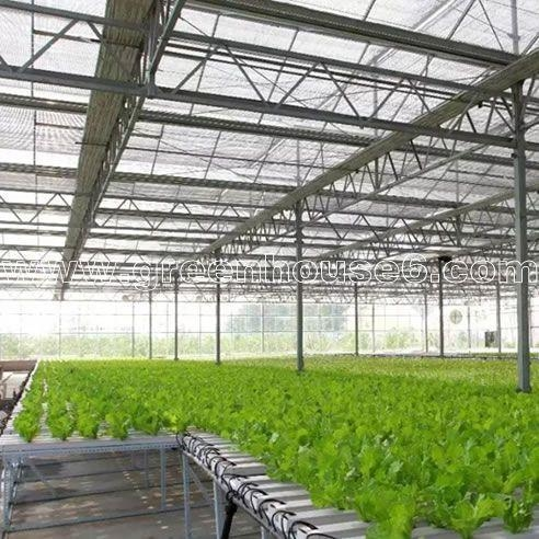 Quality Greenhouse NFT Hydroponic Growing System for Tomato and Lettuce for sale