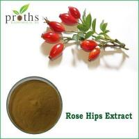 Wholesale Manufacturer vitamin C fructus rosae extract powder from china suppliers