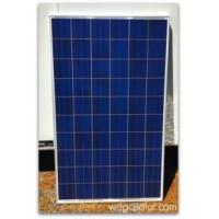 China Solar Panels HS-320-72P Hansol 320W 72Cell Solar Panel for sale