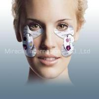 Wholesale Facial steamer spa Eye Slack Program MD890 from china suppliers