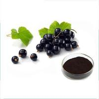 Buy cheap anthocyanins ribes nigrum from wholesalers