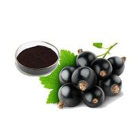 Buy cheap black currant extract 25% from wholesalers