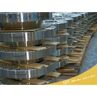 Flange Series forged steel flanges