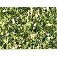 Wholesale AD Green leek from china suppliers