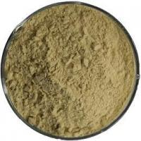 Buy cheap GREEN COFFEE BEAN EXTRACT: CHLOROGENIC ACID from wholesalers