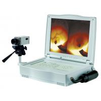 Wholesale LEO-1201 Mammary-gland Diagnostic Equipment from china suppliers