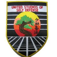 Wholesale Fire Embroidered Patches Item: Large Patch-04 Large Embroidered Patch from china suppliers
