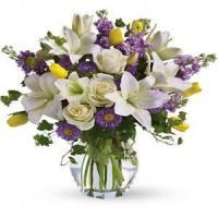 Wholesale Mother's Day Spring Waltz.No.103 delivery flower to australia sydney from china suppliers