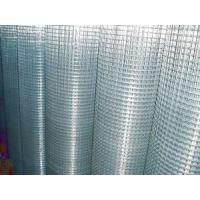 Best Electro Galvanized Welded Wire Mesh wholesale